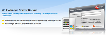 IBackup Exchange Server Backup
